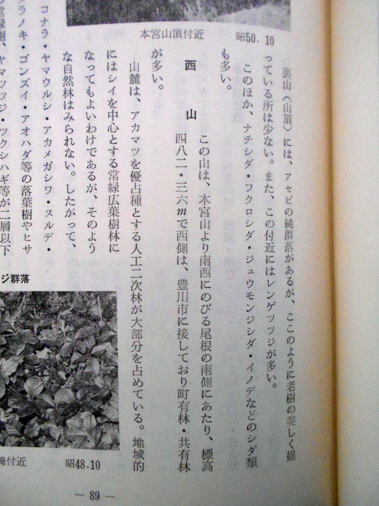 一宮町誌本文編(1976年)